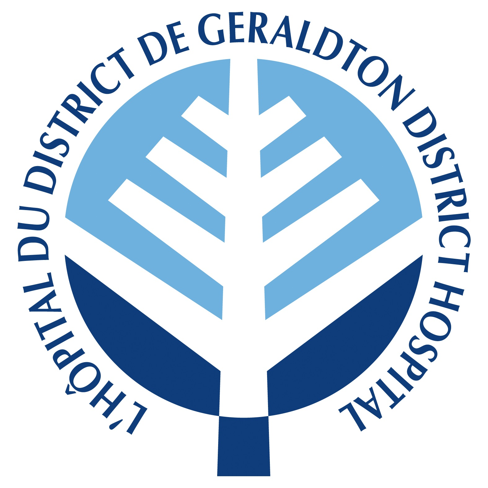 Use This One GeraldtonDH LOGO logo